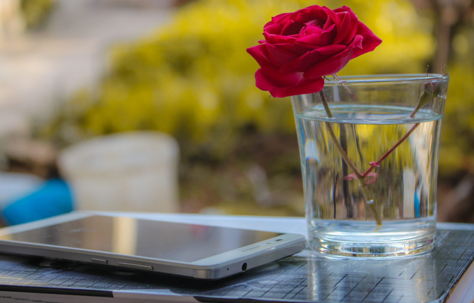 Canva - Red Rose In Clear Drinking Glass With Water Beside White Smartphone